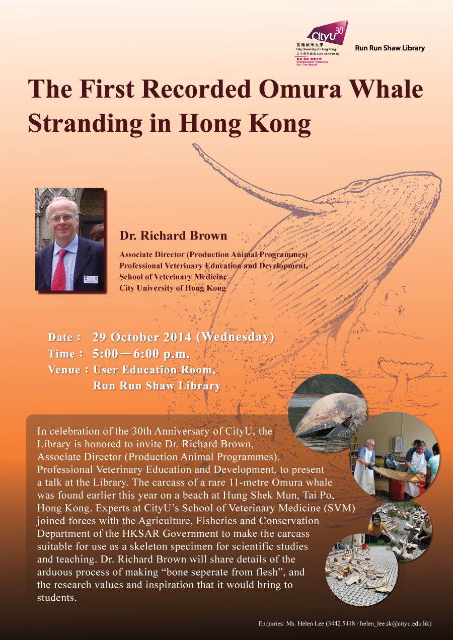Library's Talk: The First Recorded Omura Whale Stranding in Hong Kong