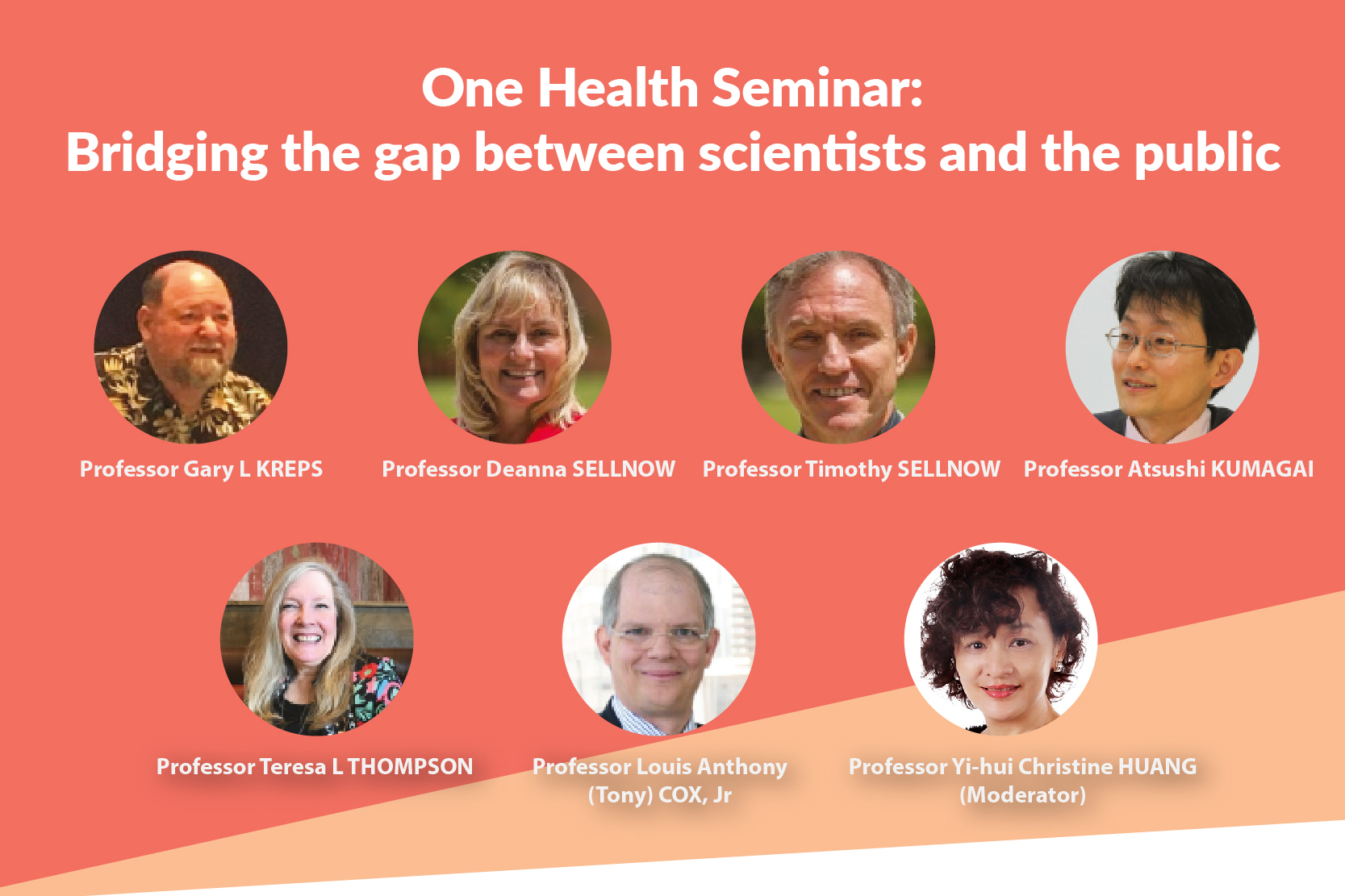 Online Seminar Gather Experts for Health Communication Discussion