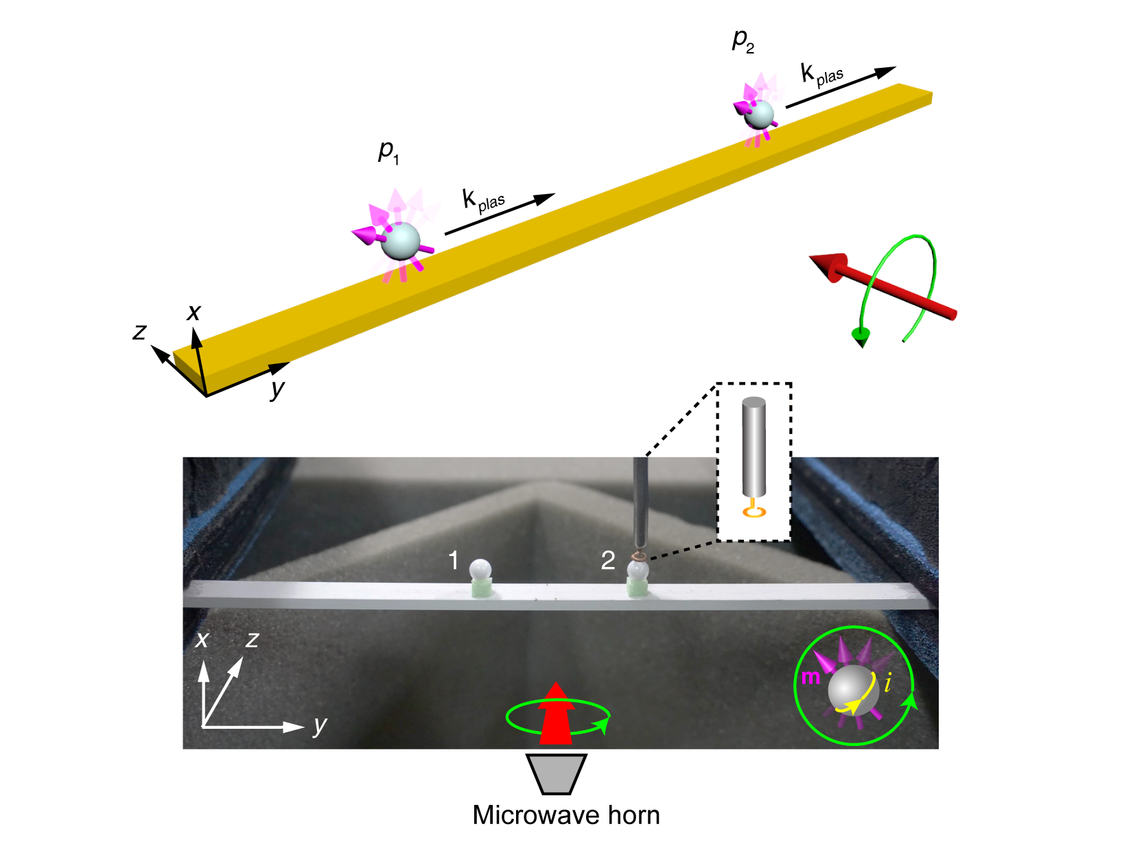 Arbitrary order exceptional point induced by photonic spin–orbit interaction in coupled resonators