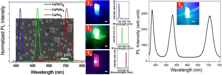 Room-Temperature Red–Green–Blue Whispering-Gallery Mode Lasing and White-Light Emission from Cesium Lead Halide Perovskite (CsPbX3, X = Cl, Br, I) Microstructures