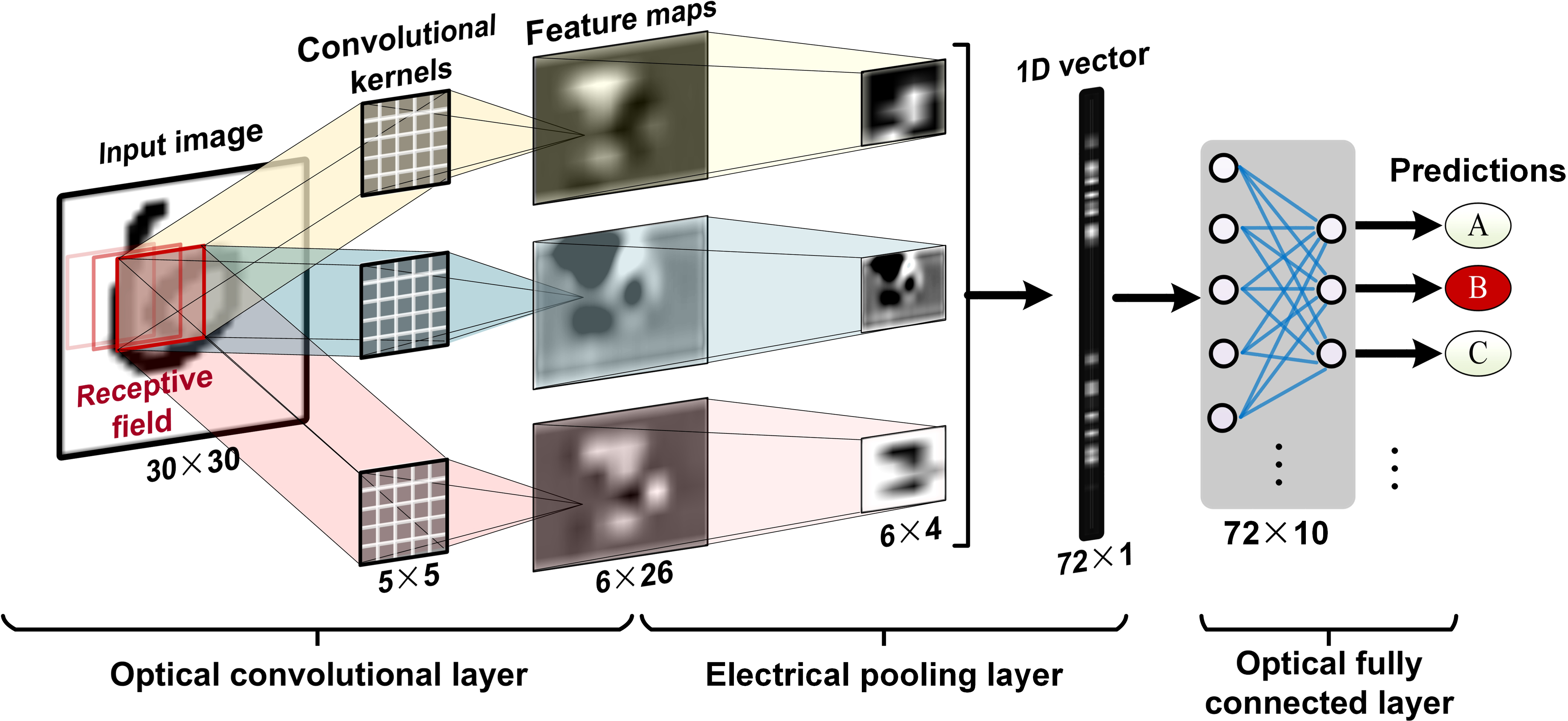 11 TOPS photonic convolutional accelerator for optical neural networks